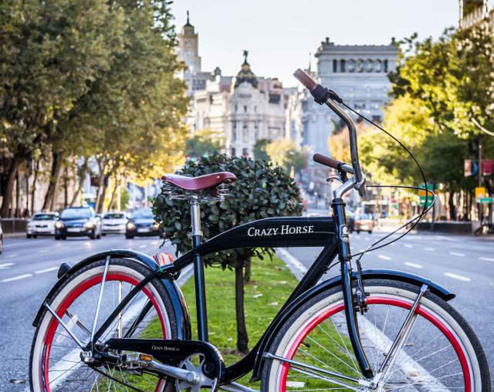 Madrid Highlights bike tour