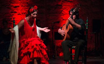 Flamenco Tour in Jerez: Walking Tour, Flamenco Show, Wine and Tapas
