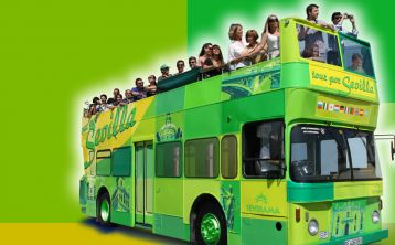 Sevilla tourist bus: Hop on Hop off City Tour Bus