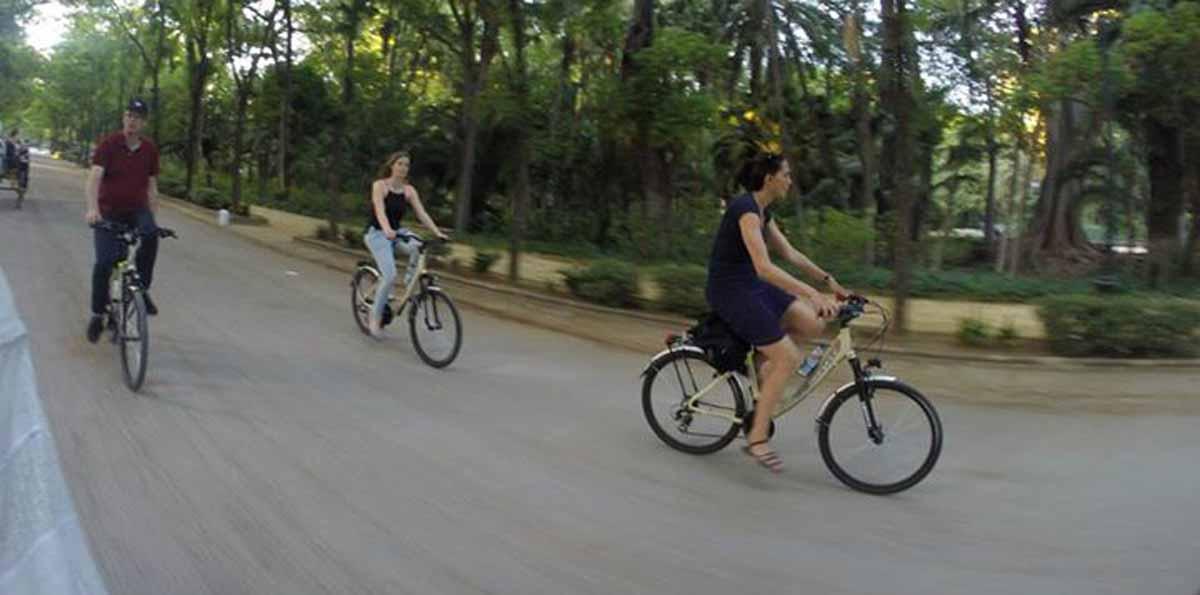Alquiler de bicicletas en sevilla nattivus for Alquiler de particulares en sevilla