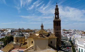 Tour a Carmona y Cata de aceite de oliva desde Sevilla