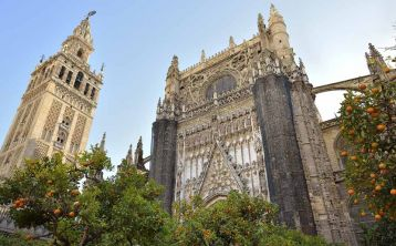 Seville walking tour with glass of wine