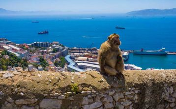 Gibraltar Sightseeing Full Day Tour from Costa del Sol