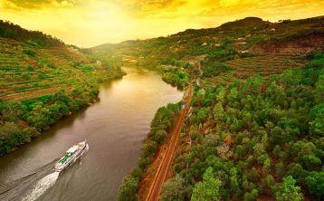 Excursión al Valle del Duero con Cata de Vino y Crucero desde Oporto