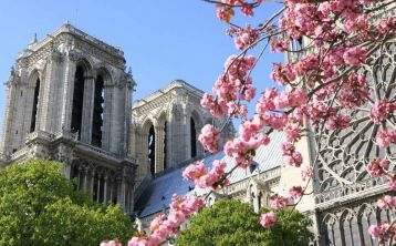 Paris Tour with Notre Dame Cathedral