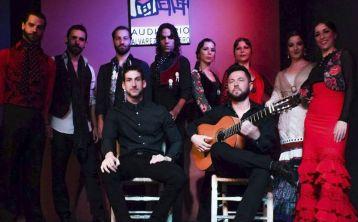 Flamenco Show Seville
