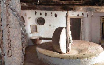Sevilla: Visita y degustación en Molino de Aceite de Oliva